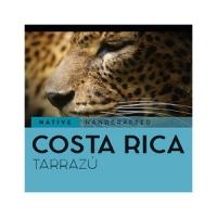 Кофе в зернах Costa Rica Tarrazu 250 г